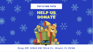 Blue Diamond Detailing Toys for tots