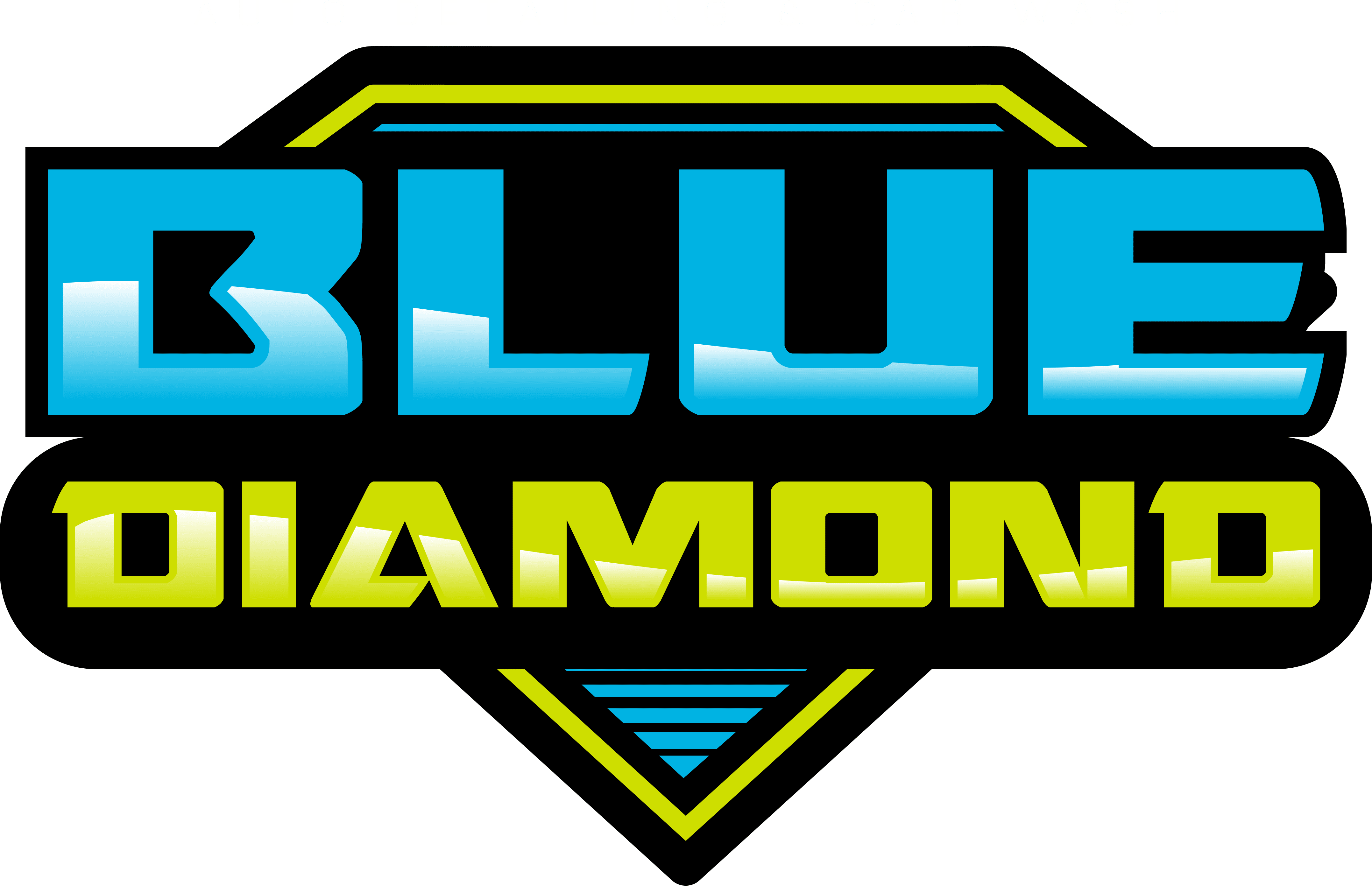 Blue Diamond | South Florida to The Keys Boat & Car Detailing